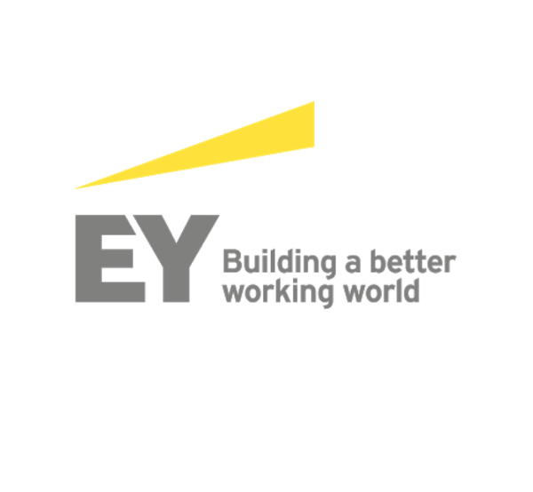EY Tax Alert No. 8/2020