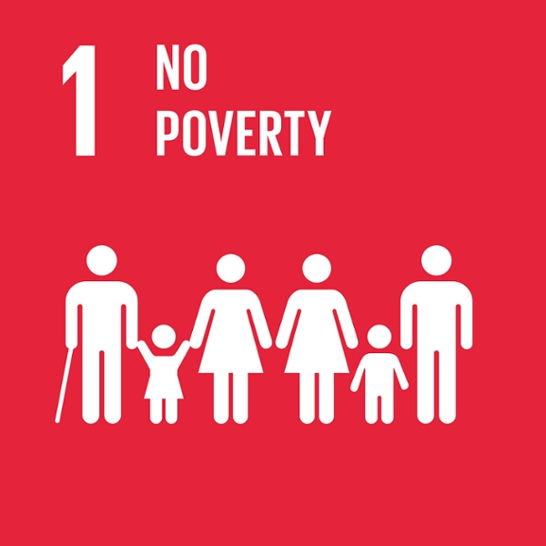 What does no poverty mean?