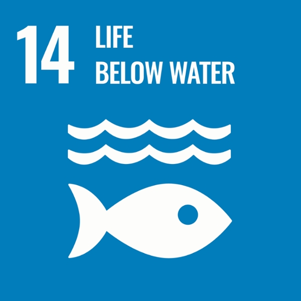 The Role of Businesses in Ensuring Life Below Water