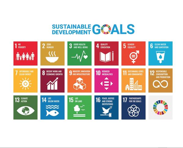 UN SDGs in Play