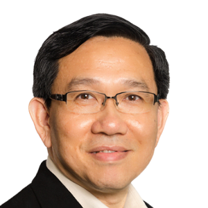 Lee See Nee (Senior Global Information Technology Leader and Operations Executive at Flextronics Technology (Penang) Sdn. Bhd.)