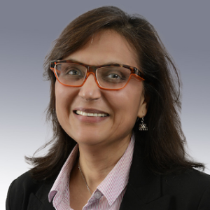 Dr Rajni Goel (Professor, Information Systems and Supply Chain Management, Howard University)